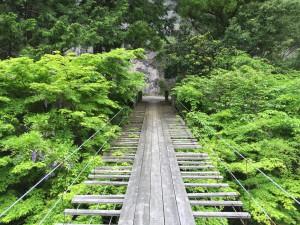 吊り橋2015,5